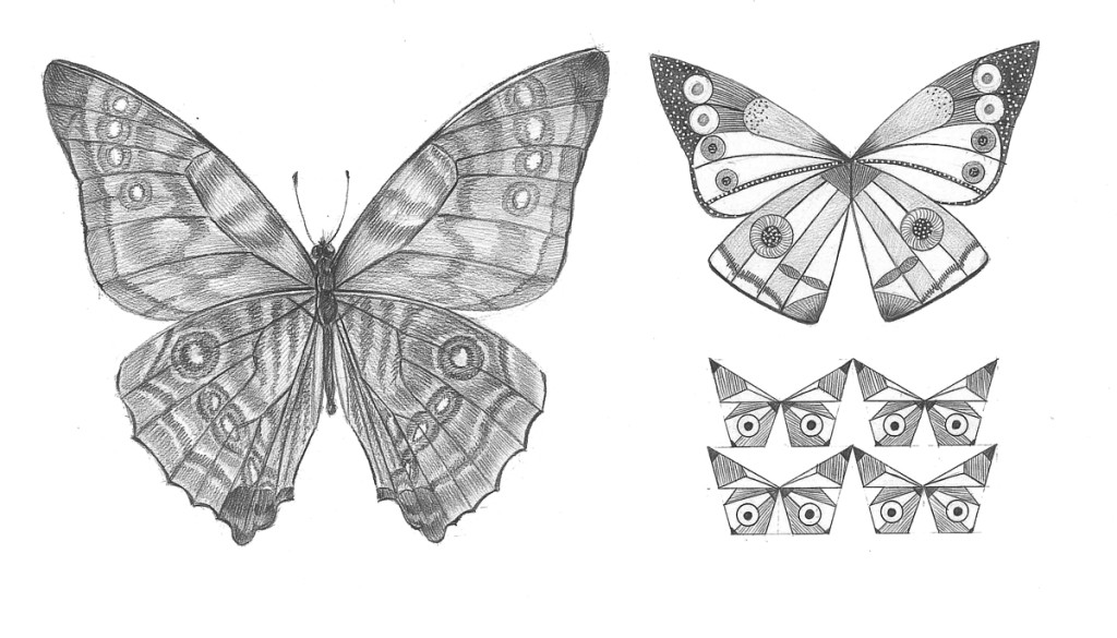 """Butterfly"". Stylization of natural element, pencil"
