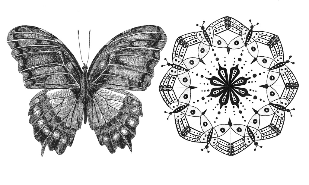 """Butterfly"". Stylization of natural element, rapidograph"