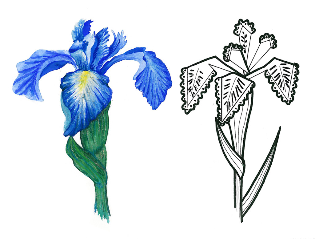 """Iris"". Stylization of natural element, watercolor & rapidograph"