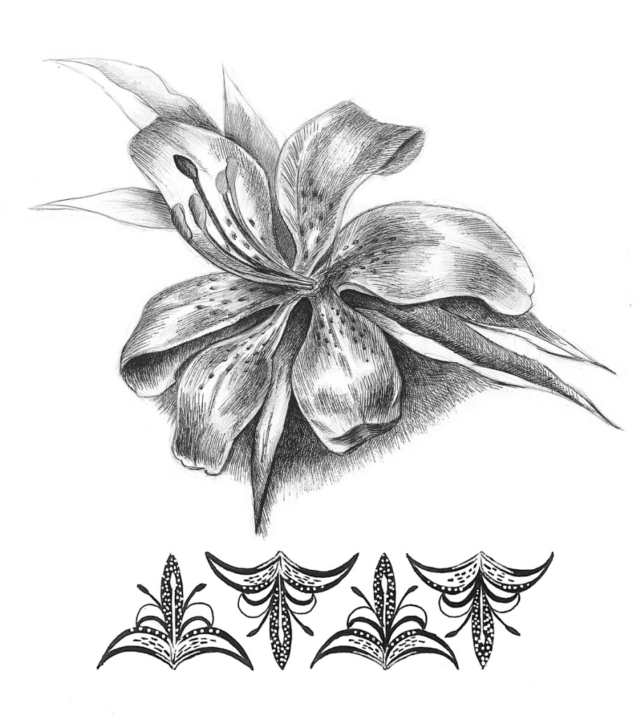 """Lily"". Stylization of natural element, rapidograph"